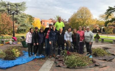 PLANTING BULBS ON THE COMMON